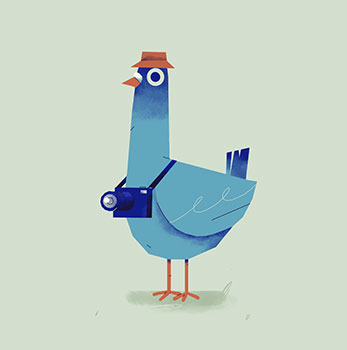 الگوریتم کبوتر گوگل چیست؟